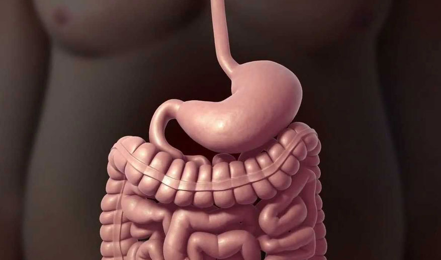 Gastric Surgery